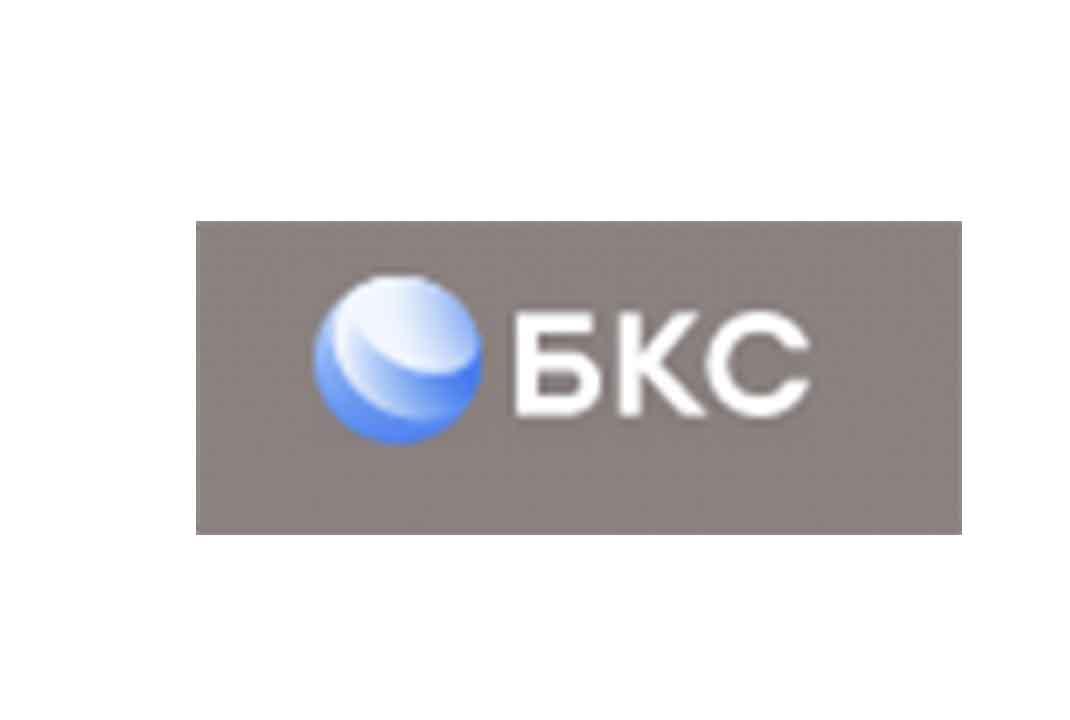 Принцип работы БКС: обзор деятельности и отзывы