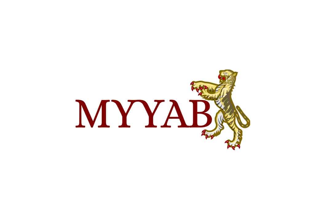 Обзор брокера MYYAB: анализ площадки и отзывов о деятельности компании