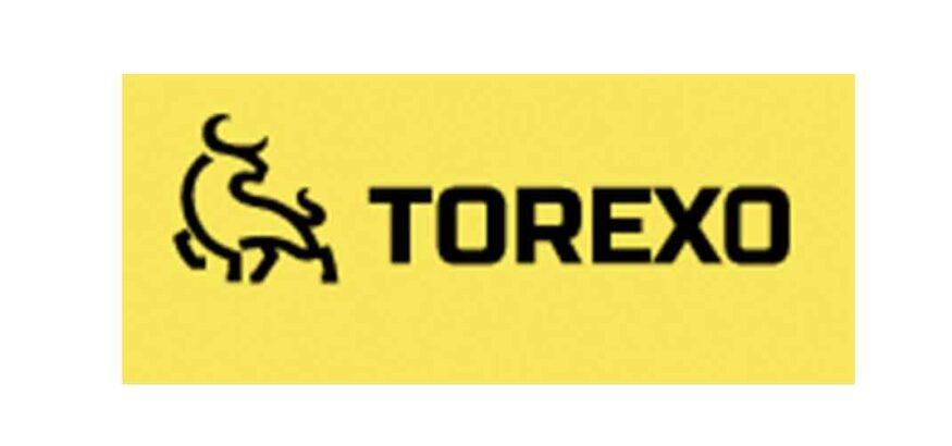 Отзывы о Torexo: стоит ли инвестировать?