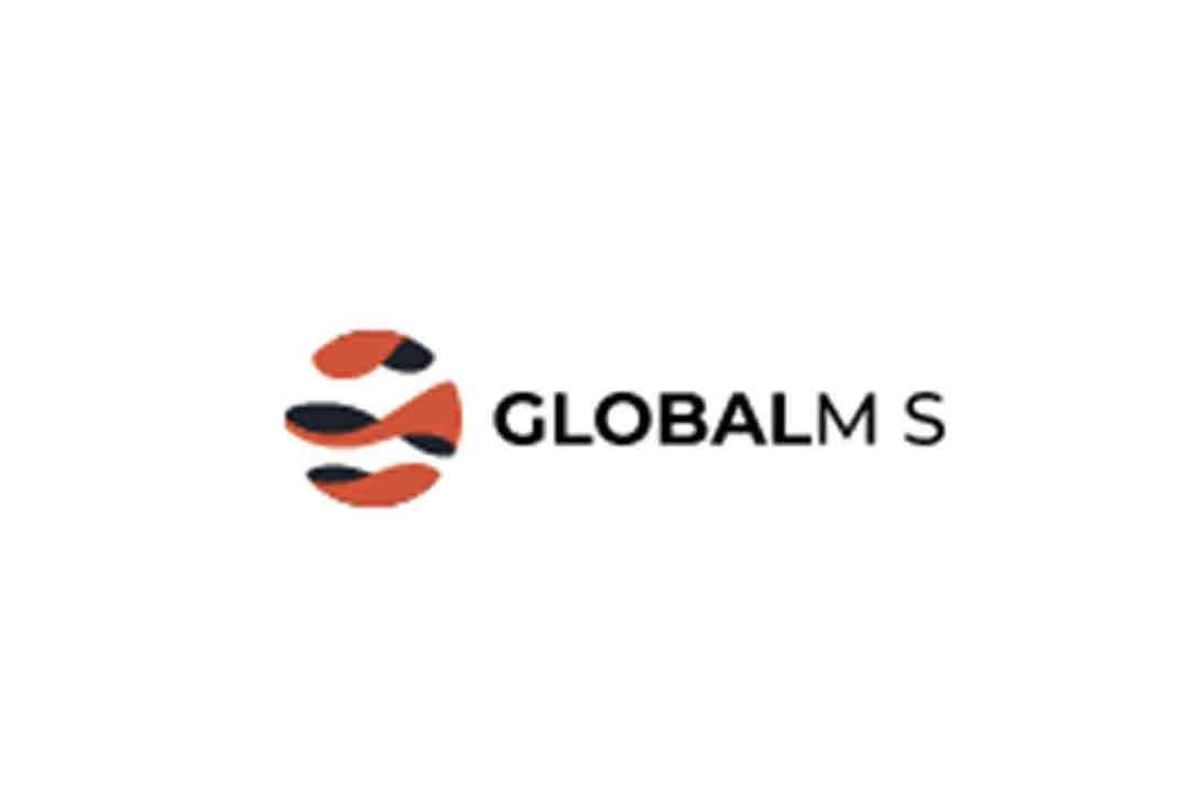 Отзывы о GlobalM-S: надежный посредник или пустышка?
