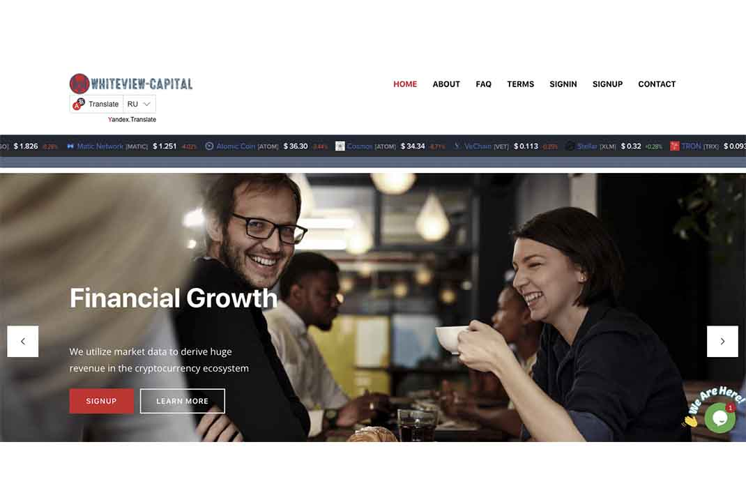 Отзывы о Whiteview-Capital: разбираем обещания проекта — Обман?